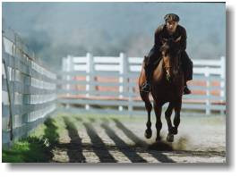 maguire, seabiscuit, tobey, movies, photograph