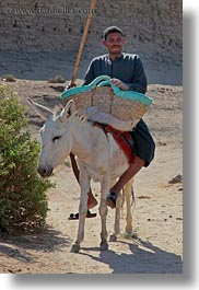 africa, al kab, donkeys, egypt, men, vertical, villages, photograph