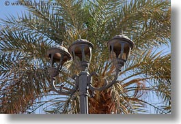 africa, al kab, egypt, horizontal, lamps, palm trees, streets, villages, photograph