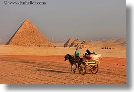 africa, cairo, carriage, egypt, horizontal, horses, pyramids, photograph