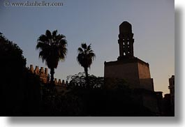 africa, cairo, egypt, horizontal, mosques, old town, palms, trees, photograph