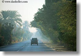 africa, cars, egypt, foggy, horizontal, luxor, roads, scenics, photograph