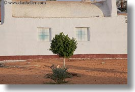 africa, bushes, egypt, faces, horizontal, nubian village, trees, windows, photograph