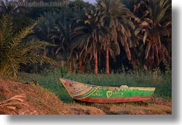 africa, boats, egypt, horizontal, palm trees, rivers, photograph