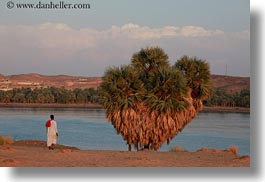 africa, egypt, horizontal, men, rivers, trees, photograph