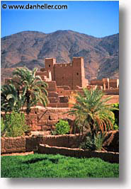 africa, draa, morocco, valley, vertical, photograph