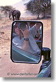 africa, elephants, kilimanjaro, people, self-portrait, tanzania, vertical, photograph