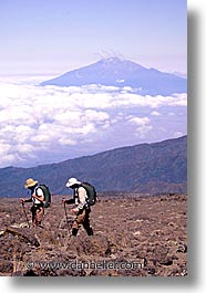 africa, drew, hiking, kilimanjaro, people, roses, tanzania, vertical, photograph