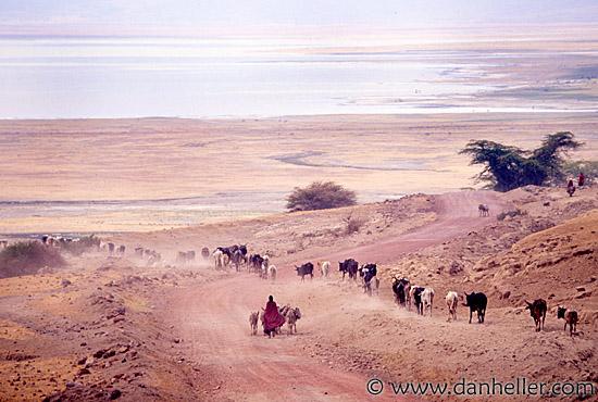 Maasai People Mannaismayaadventure S Blog