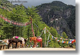 animals, asia, asian, bhutan, buddhist, flags, horizontal, horses, prayer flags, prayers, religious, style, photograph