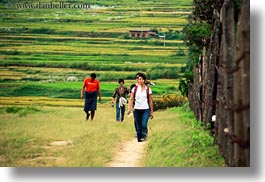 asia, asian, bhutan, down, families, hikers, horizontal, paths, people, walking, photograph