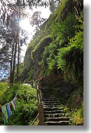 asia, bhutan, hikers, people, photographers, stairs, structures, vertical, photograph
