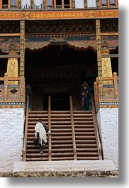 asia, asian, bhutan, buddhist, clothes, men, people, punakha dzong, religious, robes, stairs, temples, vertical, walking, photograph