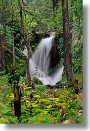 asia, bhutan, forests, lush, nature, plants, trees, vertical, water, waterfalls, photograph
