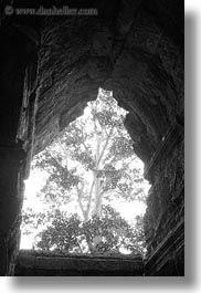 angkor wat, asia, black and white, cambodia, east entrance, holes, trees, vertical, photograph