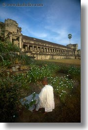angkor wat, asia, cambodia, monks, people, robes, vertical, white, photograph