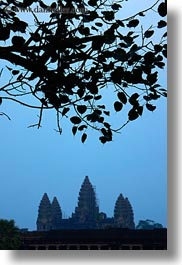 angkor wat, asia, cambodia, leaves, silhouettes, towers, vertical, photograph