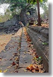 asia, beng mealea, cambodia, leaves, stairs, temples, vertical, photograph