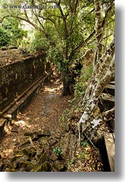 asia, beng mealea, between, cambodia, growing, trees, vertical, walls, photograph