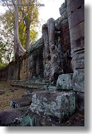 asia, cambodia, gates, stones, trees, vertical, victory gate, walls, photograph
