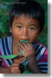 asia, boys, cambodia, eating, leaves, people, vertical, photograph