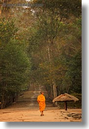asia, cambodia, down, lined, men, monks, paths, people, trees, vertical, walking, photograph