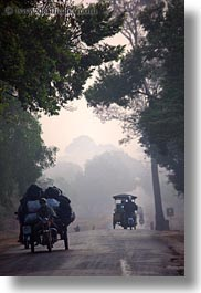 asia, cambodia, foggy, lined, roads, scenics, trees, vehicles, vertical, photograph