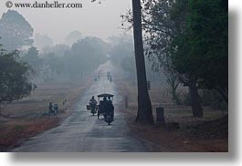 asia, cambodia, foggy, horizontal, lined, roads, scenics, trees, vehicles, photograph
