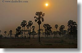 asia, cambodia, hazy, horizontal, scenics, sunrise, sunsets, trees, photograph