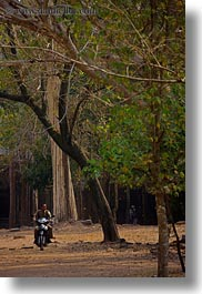 asia, cambodia, motorcycles, transportation, trees, vertical, photograph