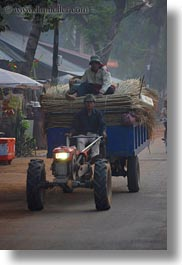 asia, bamboo, cambodia, carrying, tractor, transportation, vertical, photograph