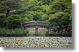 asia, bridge, horizontal, japan, kyoto, pond, ryoanji temple, photograph