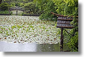 asia, horizontal, japan, kyoto, pond, ryoanji temple, photograph