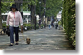 asia, dogs, horizontal, japan, people, walking, womens, photograph