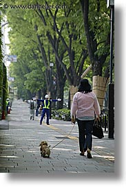 asia, dogs, japan, people, vertical, walking, womens, photograph