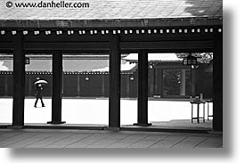 asia, black and white, horizontal, japan, kanto, meiji shrine, tokyo, umbrellas, walkers, photograph