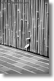 asia, bamboo, black and white, japan, kanto, tokyo, vertical, walls, photograph