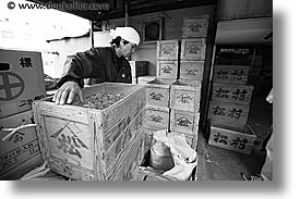 asia, black and white, boxes, horizontal, japan, kanto, tokyo, tsukiji market, workers, photograph