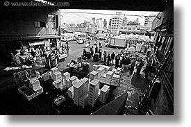 asia, black and white, export, horizontal, import, japan, kanto, stations, tokyo, tsukiji market, photograph