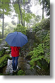 asia, japan, jills, tour group, umbrellas, vertical, photograph