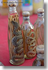 animals, asia, bottles, laos, luang prabang, snakes, vertical, photograph