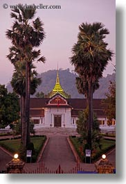 asia, buildings, laos, luang prabang, museums, nature, palace, palm trees, plants, trees, vertical, photograph