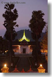 asia, buildings, laos, luang prabang, museums, nature, nite, palace, palm trees, plants, trees, vertical, photograph