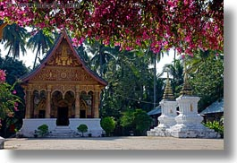 asia, bougainvilleas, buddhist, buildings, flowers, horizontal, laos, luang prabang, nature, paphaimisaiyaram, religious, temples, wat, photograph