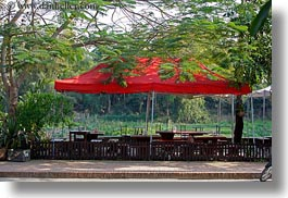 asia, horizontal, laos, luang prabang, red, trees, umbrellas, photograph