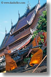 asia, asian, buildings, colors, laos, luang prabang, men, monks, oranges, people, roofs, vertical, photograph