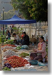 asia, foods, fruits, laos, luang prabang, market, people, produce, selling, selling food, vegetables, vertical, womens, photograph