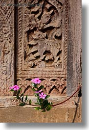 asia, doors, flowers, laos, luang prabang, pink, plants, vertical, woods, photograph
