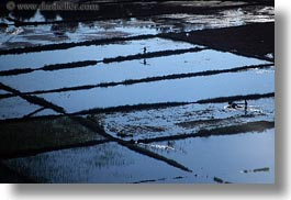 asia, farmers, fields, flooded, horizontal, laos, luang prabang, rice, rivers, scenics, photograph