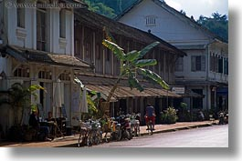 asia, bicycles, bikes, horizontal, laos, luang prabang, palm trees, transportation, photograph